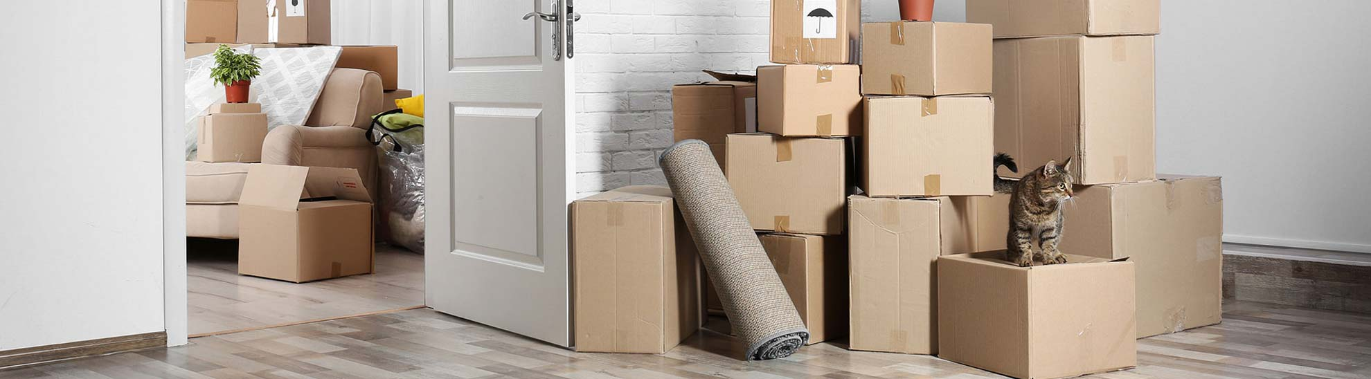 relocation and removal services